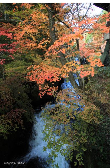 2012.10.20竜図の滝