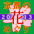 icon_hanameguri2013_114px.png