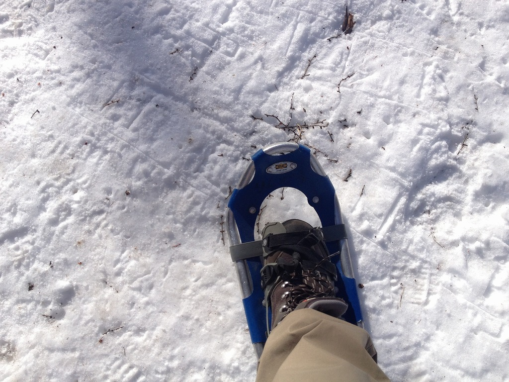 snowshoe02.jpg