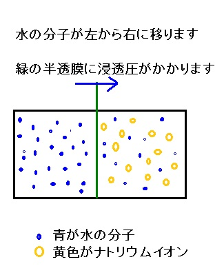 2-102.jpg