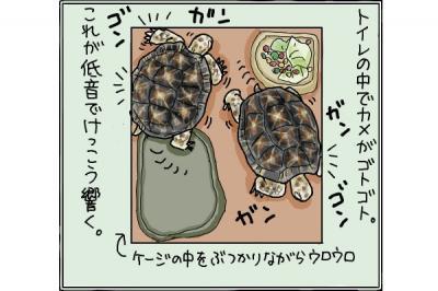 kaki_m_よふかし3_convert_20141021220845