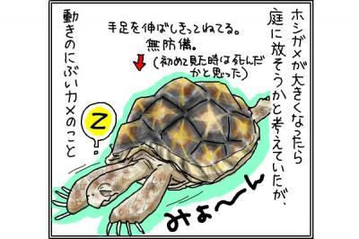 kaki_m_庭3_convert_20141102203618