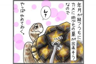 kaki_m_庭4_convert_20141102203640