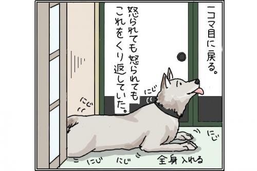 雑種犬4p_convert_20141114201121