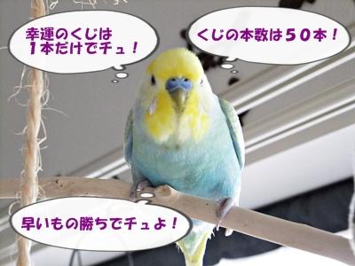 180,000キリ番受賞者あみだくじ決定戦!
