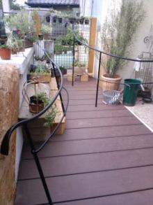 Innocent Garden-CA3G02860001.jpg