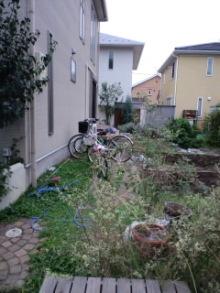 Innocent Garden-CA3G0360.jpg