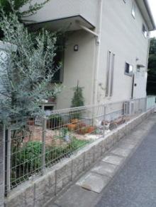 Innocent Garden-CA3G0362.jpg