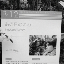 Innocent Garden  BOSS-ipodfile.jpg
