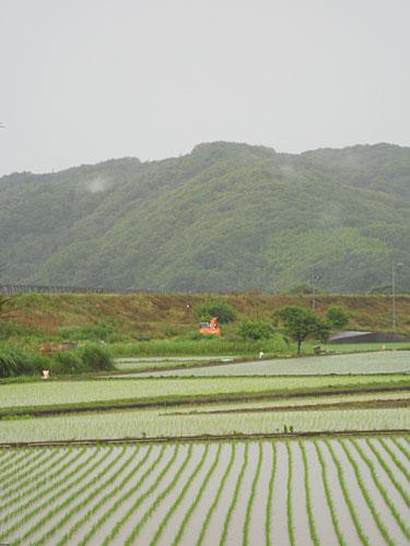 taifun-120619-l.jpg
