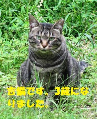 IMG_2412 吉備