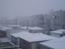 0 snow 1