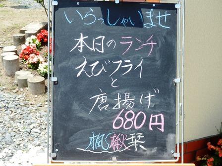 P6010010_03.jpg