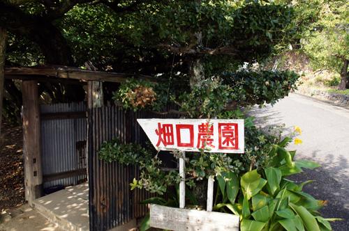 hataguchi.jpg