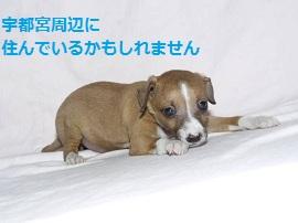 3_20120527150822.jpg