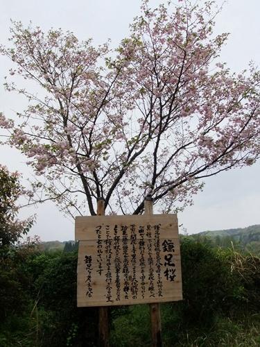 2012.4.28 春のふるさと歩き 034 (3)