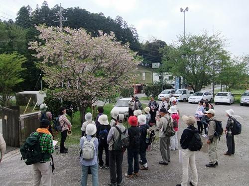 2012.4.28 春のふるさと歩き 034 (23)