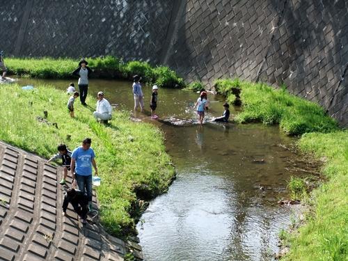 2012.5.15 矢那川で遊ぶ子供達 007
