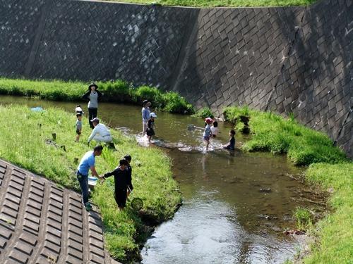 2012.5.15 矢那川で遊ぶ子供達 007 (1)