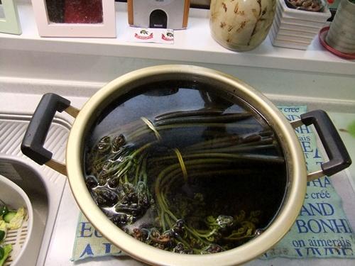 2012.5.22 新潟からの贈り物(山菜) 003