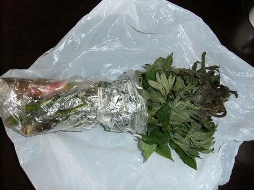 2012.5.22 新潟からの贈り物(山菜) 005