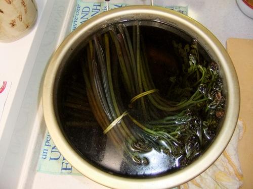 2012.5.22 新潟からの贈り物(山菜) 002