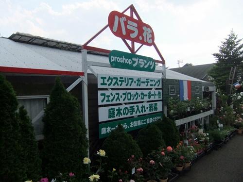 2012.5.26バラの講習会 (袖ヶ浦) 014