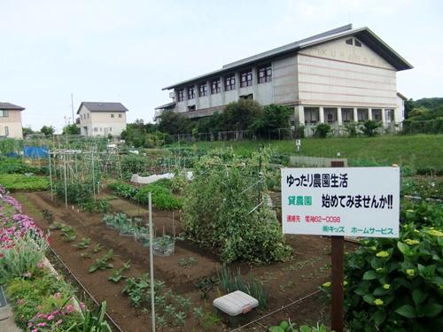 2012.5.26 貸し農園(袖ヶ浦) 013 (1)
