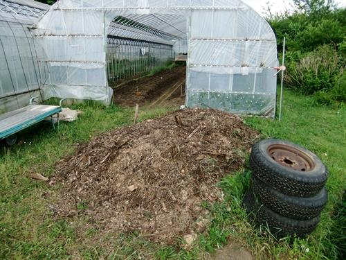 2012.6.1 初夏の野菜畑(第2回) 037 (11)