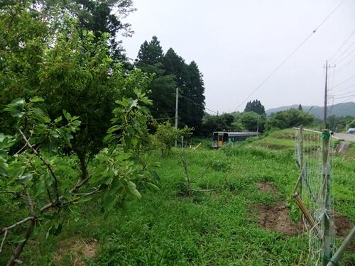 2012.7.6 ファーマーズクラブの榎本会員宅 001 (32)