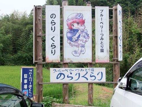 2012.7.22 ブルーベリー(のらりくるり) 009 (5)