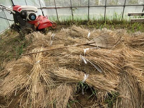 2012.10.24 秋の畑作 036