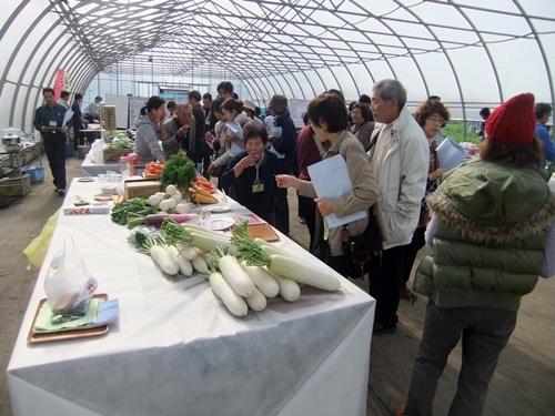 2012.11.13 みかど協和オープンディ 013 (6)