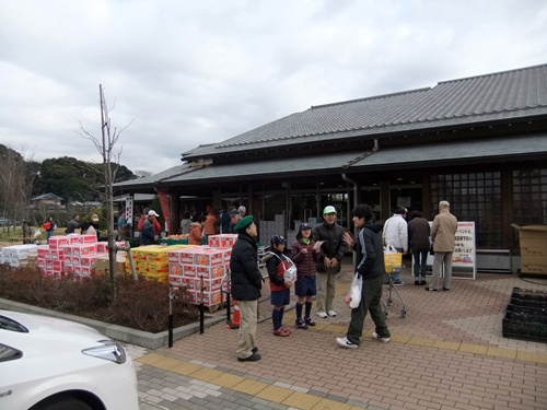 2012.12.23 ゆりの里風景 006