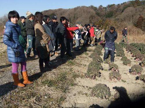 2013.1.12 耕す㈱新年会(野菜) 020 (6)