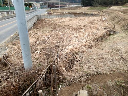 2014.1.1 耕作農地(伊藤農園) 038