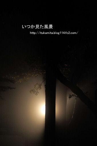 DS7_2563ri-ss.jpg