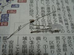 P1070409.jpg
