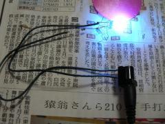 P1070410.jpg