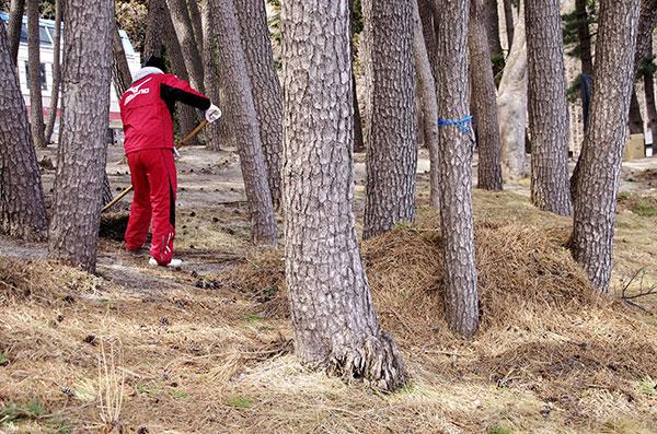 ボランティアによる根浜の清掃作業