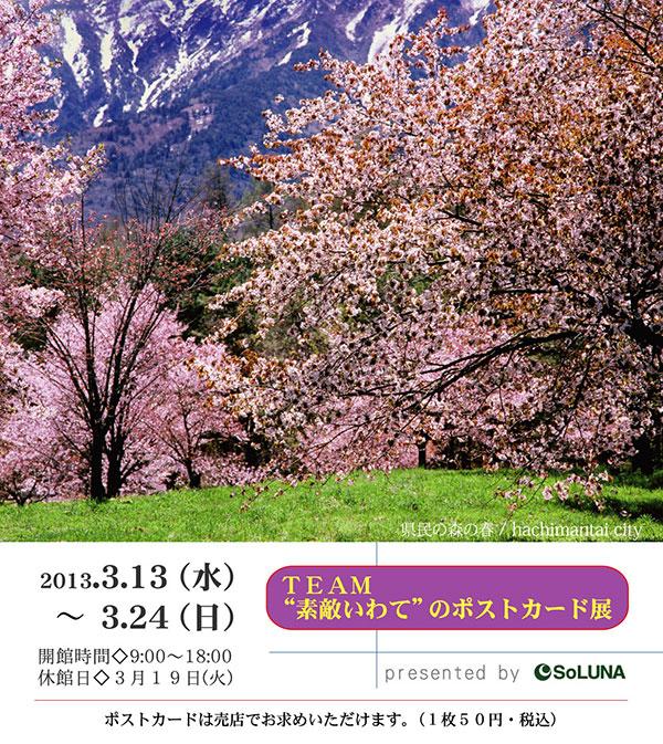 ポストカード写真展(裏)