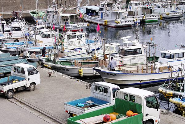 大田名部漁港のにぎわい