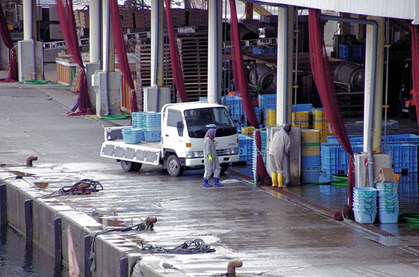 大田名部漁港の集荷場