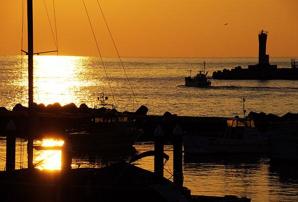熱海漁港の朝