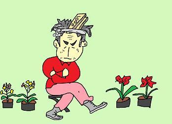 五市の花屋の親父