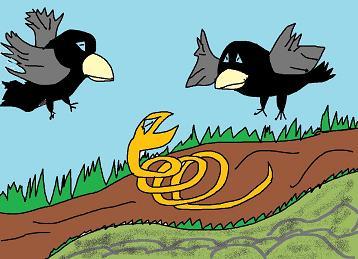 ヘビとカラス