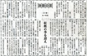 川柳記事 1