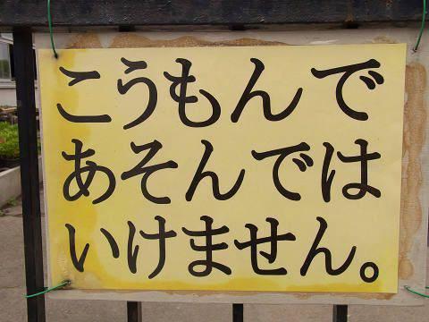 hirame129589.jpg