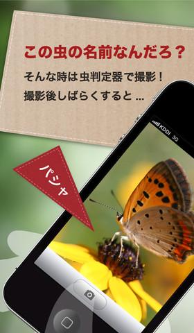 mzl_cqplohrd_320x480-75.jpg