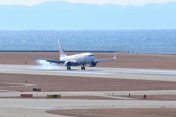 201301-JAL-01.jpg